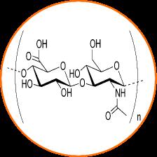 pulsar oxygène barophorèse - acide hyaluronique